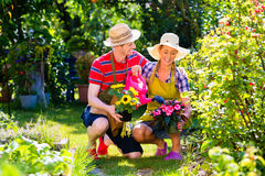 Couple planting flowers in garden. Happy couple planting flowers in garden Royalty Free Stock Photos