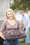 Couple Planting Seedlings On Organic Farm Stock Photography