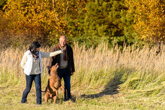 Couple playing with dog autumn sunny countryside Royalty Free Stock Photography