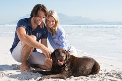 Couple playing with dog Stock Photos