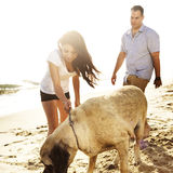 Couple playing with pet dog. Stock Images