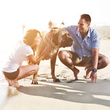 Couple playing with pet dog. Stock Image