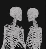 A couple of polygonal skeleton in monochrome color on dark Stock Photos
