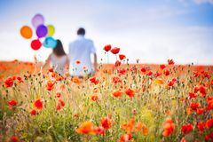 Couple poppies field. The wedding ceremony beautiful bride and groom stylish summer fun smile joy stock image