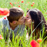 Couple in poppy field Stock Images