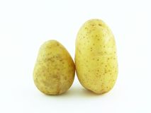 Couple potatoes. Isolated on white background stock photography