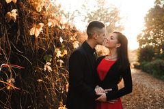 Young couple of pretty girl and man walk outdoors in park on autumn day on natural background stock image