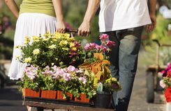 Couple Pulling Cart Full Of Various Flowers Stock Image