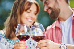 Couple raising a toast Stock Images