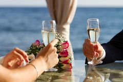 Couple raising wedding toast Royalty Free Stock Photography