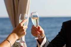 Couple raising wedding toast Royalty Free Stock Photos