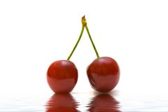 Couple of red cherry. Fresh red cherry on water background royalty free stock photo