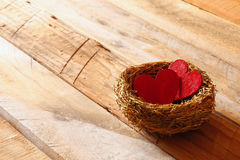 Couple of red hearts in the bird nest Royalty Free Stock Photos