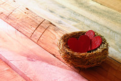 Couple of red hearts in the bird nest Royalty Free Stock Images
