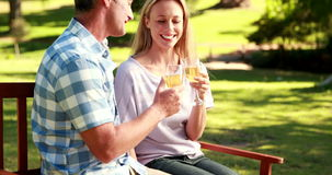 Couple relaxing in the park with glass of wine stock video footage
