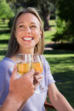 Couple relaxing in the park with wine Stock Photos