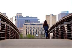 Young woman walking with her dog in Minneapolis, Minnesota. It's a summer evening in big city. Take your little four-legged buddy for a walk and enjoy views royalty free stock photos