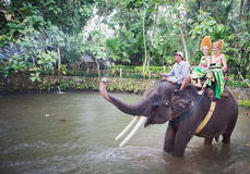 Couple riding and traveling on an elephant Stock Photo