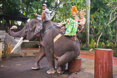 Couple riding and traveling on an elephant Royalty Free Stock Photography