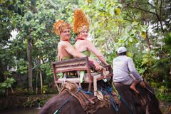 Couple riding and traveling on an elephant Stock Photography
