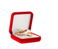 A couple rings. In a box on the white royalty free stock photography