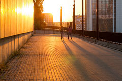 Couple rollerblading at sunset. stock photography