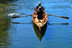 Couple Rowing row boat over Avon River Christchurch - New Zealan Royalty Free Stock Photo