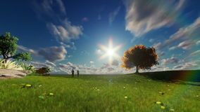 Couple running on green meadow, tree of life against beautiful sky. Hd video stock footage