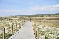Couple running on the walkway royalty free stock photo
