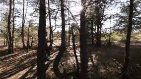 Couple running among wood stock video