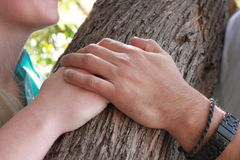 Couple's Hands. Image of couple's hands holding on tree Stock Image