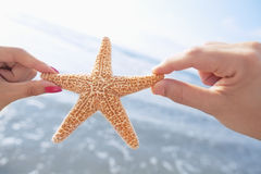 Couple`s hands holding starfish at the beach Stock Images