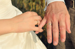 Couple's hands with wedding rings. Newly-married couple with wedding rings Stock Image
