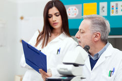 Couple of scientist in a laboratory Stock Images