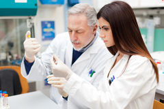 Couple of scientist researching in a laboratory Royalty Free Stock Photos