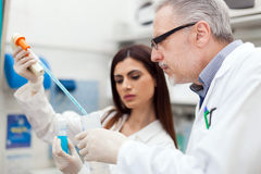 Couple of scientists in a laboratory Stock Image