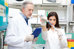 Couple of scientists in a laboratory Royalty Free Stock Photography