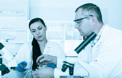 Couple of scientists   Royalty Free Stock Images
