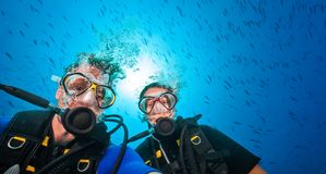 Couple of scuba divers, portrait photography. Underwater sports and activities Royalty Free Stock Photos