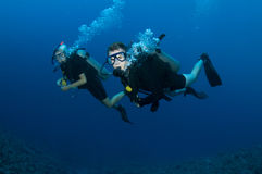 Couple scuba diving Stock Images
