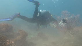 Couple scuba diving in murky water.  stock footage