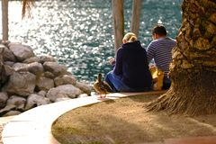 Couple, seashore and duck. Quite positive image of a couple sitting somewhere at seashore. Sunny weather, warm daylight, blurring sea at the background, some royalty free stock images