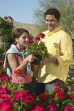 Couple Selecting Flower Plant Royalty Free Stock Images