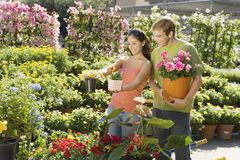 Couple Selecting Potted Plants Stock Photography
