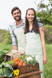 Couple selling organic vegetables at market Stock Photos