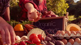 Couple selling organic vegetables at market stock video footage