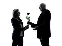 Couple senior lovers flower rose  silhouette Stock Photos