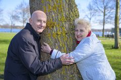 Couple senior men and women are flirting with tree in park stock images