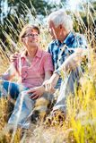 Couple of senior woman and man sitting in a meadow in the grass royalty free stock images