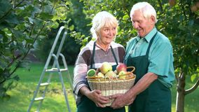 Couple of seniors, apple basket.